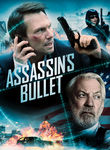 Assassin's Bullet (2011)