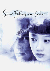 Rent Snow Falling on Cedars on DVD