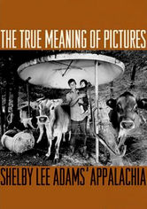 Rent The True Meaning of Pictures on DVD