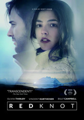 Rent Red Knot on DVD