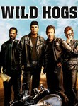 Wild Hogs (2007) box art